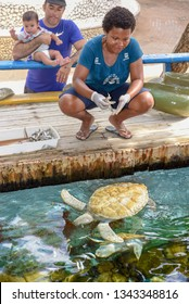 Praia do Forte, Brazil - 31 January 2019: woman who feeds the turtles on Project Tamar tank at Praia do Forte in Brazil