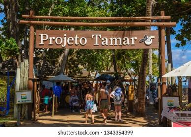 Praia do Forte, Brazil - 31 January 2019: entrance of Project Tamar at Praia do Forte in Brazil
