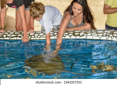 Praia do Forte, Brazil - 31 January 2019: woman and children caressing breed fish on Project Tamar tank at Praia do Forte in Brazil