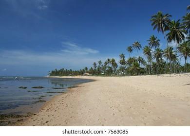 Praia do Forte, a prestigious tropical beach located near Salvador, Bahia, Brazil