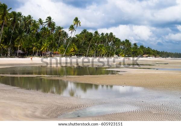 Praia dos Carneiros - Pernambuco, Brazil