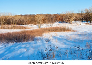 prairie hills and woodlands of battle creek regional park in saint paul minnesota