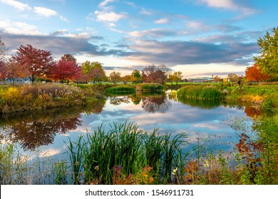 Prairie Lakes Park in Des Plaines Town of Illinois