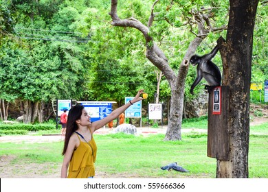 PRAJUABKIRIKHAN,Thailand-02 July 2016 : Thai female tourist was giving some fruit for the monkey. This place was Thai army station at Thailand