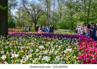 Pralormo / Italy - April 21 2018: Tourists and people in costumes in the park of the Castle of Pralormo during Mister Tulip exhibition, with the spectacular blooming of thousand of tulips, Piedmont