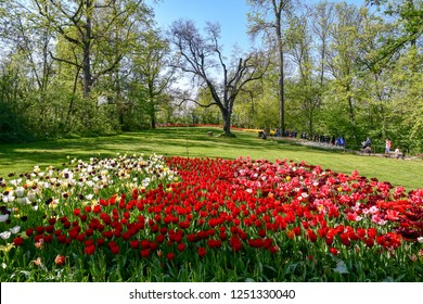 Pralormo / Italy - April 21 2018: Park of the Castle of Pralormo during the spring event Mister Tulip, with the extraordinary flowering of over 90000 tulips and daffodils, Piedmont