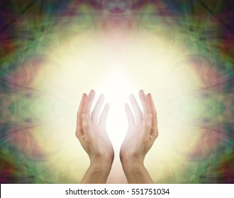 Prana Healing Energy Field - Female energy worker with hands outstretched and open upwards sensing white healing energy on pale yellow background with dark vignette edges