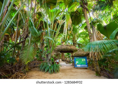 "Praslin, Seychelles  - May 4, 2016: Entry for Vallee de Mai Nature Reserve (""May Valley"")."