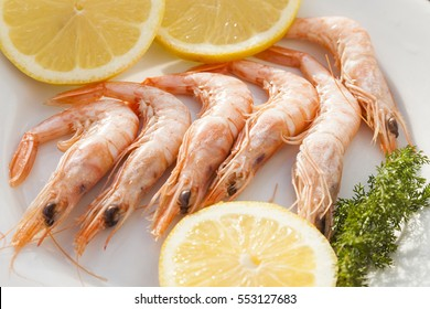 Prawn dish, seafood,gambas blancas