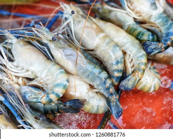 Prawn or River shrimp common for sale in bangkok fresh market.