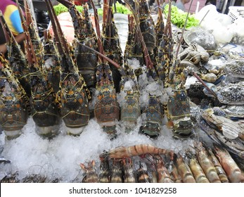 Prawns, lobsters, crabs, clams and squid at a Thai market