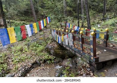 Prayer flags with a footbridge at Taktsang Monastery, Paro Valley, Paro District, Bhutan