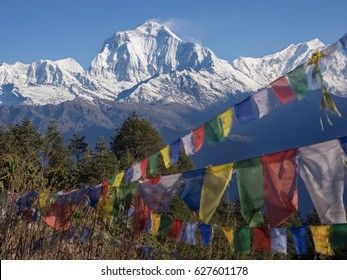 Prayer flags and Mount Annapurna from poon hill viwe point, round Annapurna circuit trekking trail, Nepal