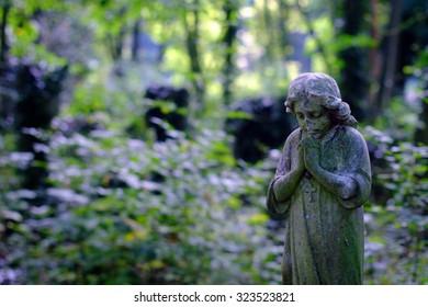 Praying angel statue in wild cemetery park