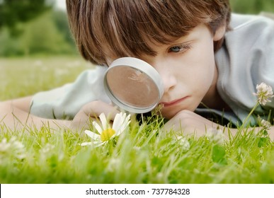 Pre School Boy, discovering Nature while looking through a magnifying glass