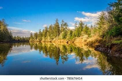 Preacher's Slough At Chehalis River Preserve, Washington State, USA