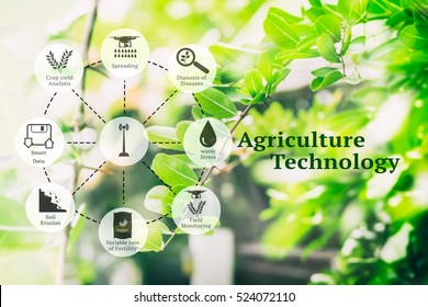 Precision Agriculture and Agritech concept. Sensor network in Agriculture technology network on abstract green leaves with message background.