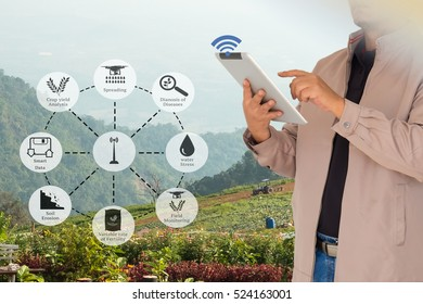 Precision Agriculture and Agritech concept. Sensor network in Agriculture technology network on framer using digital tablet to connect the sensor system against agricultural field background.