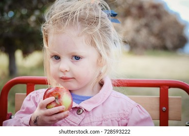 Precocious child sitting in red wagon eating a fresh picked apple