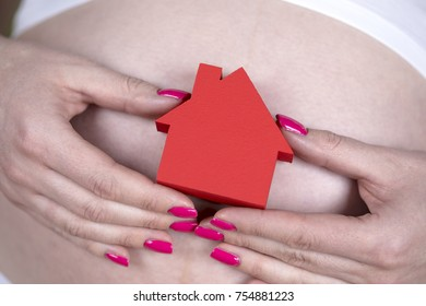 Pregnant house concept, of new home and family