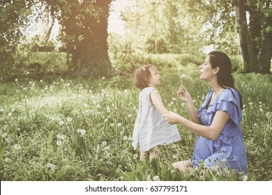 Pregnant mother playing with little daughter in park. Mother and daughter blowing dandelion.