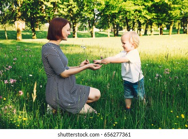 Pregnant woman with child in flower meadow. Mother and son on nature in summer park. Little child boy walking with mother, who pregnant for second time. Pregnancy, new life, family, parenthood concept
