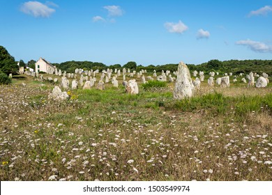 Prehistoric megalithic menhirs alignment in Carnac, Brittany. France