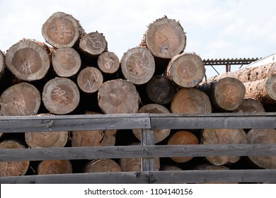 Preliminary drying of logs.
