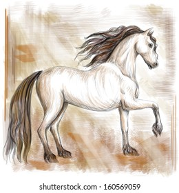 preliminary picture of horse on an abstract grange background