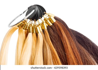 Premium hair extension palette with color samples from blonde to black isolated on white.