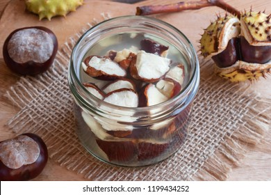 Preparation of alcohol tincture from fresh horse chestnuts