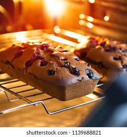 Preparation of a blueberry delicious cake at home in an electric oven made of natural ingredients without additives and primitives