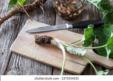 Preparation of burdock tincture from fresh burdock root