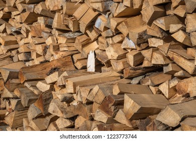 Preparation of firewood for the winter. firewood background, Stacks of firewood in the forest. Pile of firewood.