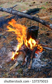 Preparation of the food in wood on campfires