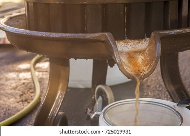 Preparation of fresh apple juice with an old fruit press