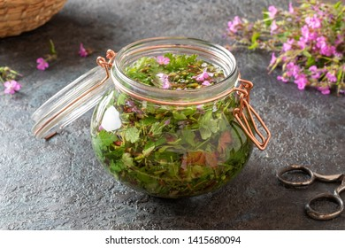 Preparation of homemade tincture from fresh herb-Robert, top view