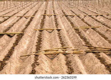 Preparation of land for growing crops