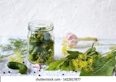 preparation and process of canning cucumbers, pickles and pickling. place for text. copy space. dill flowers, bay leaf, horseradish leaf, spices and herbs. copy space. process fermented in glass