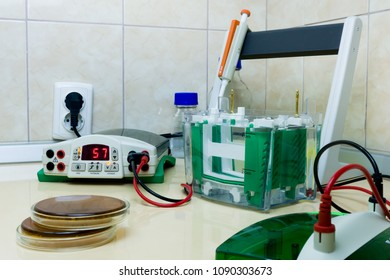 Preparation of samples for vertical electrophoresis. Equipment in the workplace for electrophoresis.