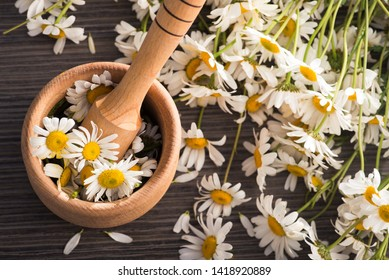 Preparation for whistling essential chamomile oil on wooden bowl. Concept of flowers and organic cosmetic.