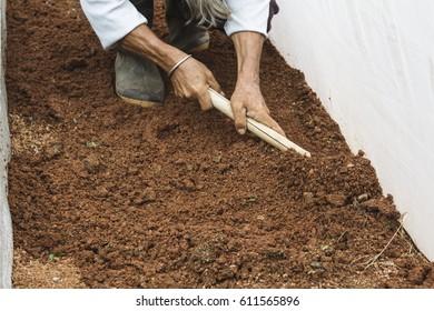 Prepare soil ,Fresh melon farm at the Big Mountain Thailand.