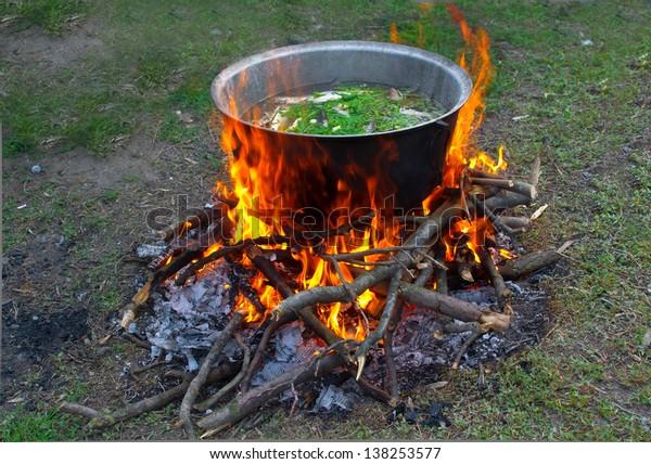 prepare tasty food over a campfire