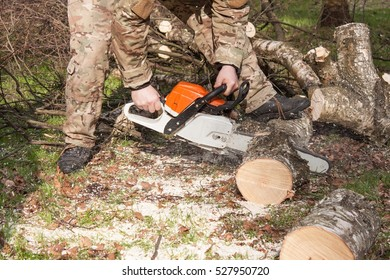 Preparing firewood for the winter. lumberjack working with a chainsaw, logging in the forest.