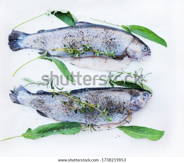 Preparing fresh fish, top view. Fresh fish with herbs and spices. Raw trout fish