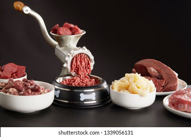 Preparing fresh raw meat for barf dog food with a mix of poultry, heart, stomach, lungs, offal and beef being minced in an old grinder