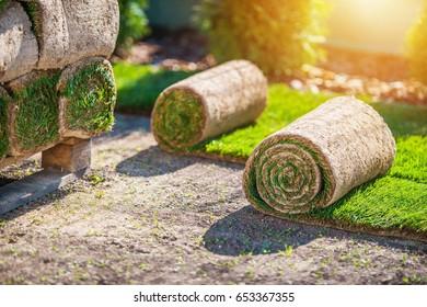 Preparing For a Grass Installation in a Garden. Natural Grass Turf.