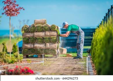 Preparing For Natural Grass Installation Inside the Backyard Garden. Garden Design and Building Theme. Pile of Grass Turfs.