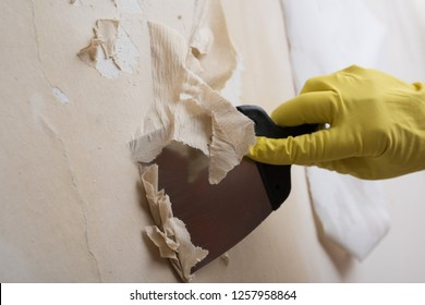 Removing Wallpapers Stock Photos Images Photography