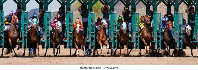 Prescott Valley, Arizona / USA   - September 1, 2019; Large field of horses leaving the starting gate at Arizona Downs. Version 1